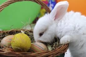 Semana Santa 2014: La leyenda del Conejo de Pascua