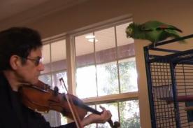VIDEO: Loro ataca a vionilista para que no toque más música