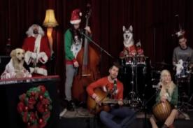 Insólito: Encantadores perros muestran su 'talento' tocando villancico