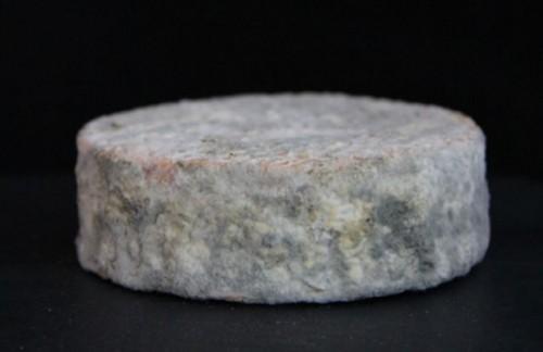 ¿Estarías dispuesto a comer un queso elaborado con células del pie?