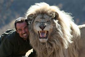 La bella historia de amistad entre un hombre y feroces leones - VIDEO