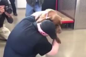 EE.UU: Mira el emotivo reencuentro de un perro y su entrenador