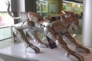 Centro comercial en China exhibe las armaduras doradas de Saint Seiya