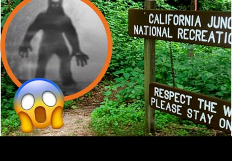 Video muestra a supuesta criatura mitad perro, mitad humano