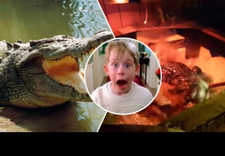 Quiso desalojar a inquilino de su casa, pero encontró cocodrilo en el jacuzzi