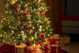Para no creer: Mujer roba árbol de Navidad de un centro de apoyo - VIDEO