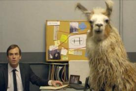 Llama Cop, la nueva comedia que arrasará en Youtube