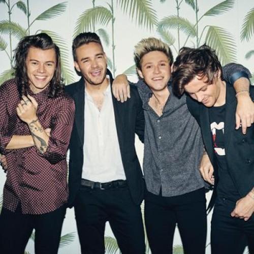 ¡Integrantes de One Direction no se soportan!