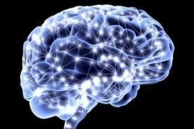 ¿Sabes cómo se forman los recuerdos en el cerebro? - VIDEO