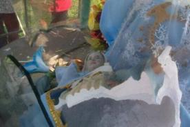 SJL: Destruyen imagen de Virgen de la Inmaculada Concepción