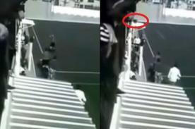 Insólito: Hombre lanza perro a árbito desde tribuna de estadio  - VIDEO