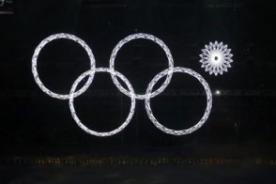 Sochi 2014: Polo se burla del error en la inauguración