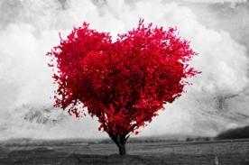San Valentín: Imágenes de amor para dedicar a tu pareja