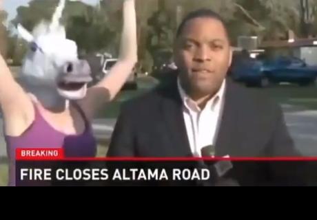 Fails en vivo: A todos estos reporteros los interrumpieron de la manera más atrevida (VIDEO)