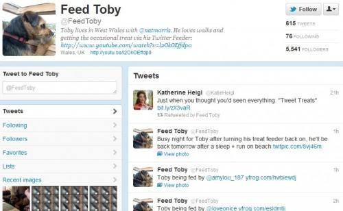 Perro es alimentado mediante Twitter