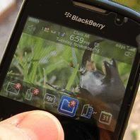 ¿Problemas con tu Blackberry? Entérate el porqué de las fallas en el servicio