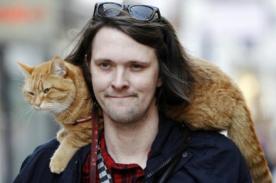 Bob, el gato callejero que cambió la vida de un músico de la calle - FOTOS