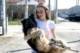 Niña utiliza Facebook para rescatar a perros abandonados