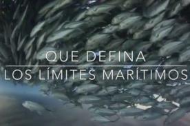 La Haya Perú Chile ¿Cómo inició el diferendo marítimo? - ViDEO