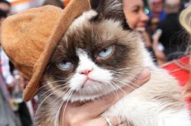 MTV Movie Awards 2014: Grumpy Cat también desfiló en la alfombra - FOTOS