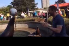 Lukas Podolski hizo cabecitas con una foca en Alemania-VIDEO