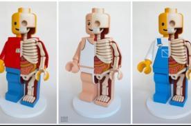 Mario Bros y Barbie como esculturas dignas de exposición de anatomía - FOTOS