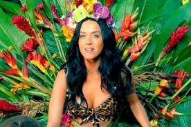 Grammy 2014: Katy Perry y Pink nominadas a Mejor Canción del Año