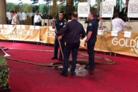 Globos de Oro 2014 sufrieron la inundación de su alfombra roja