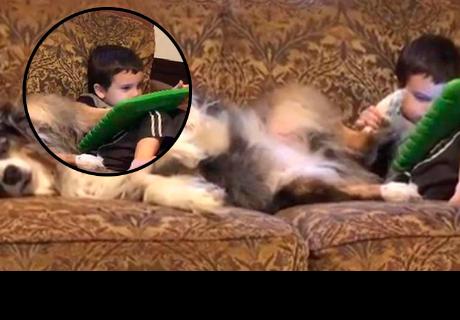 Niño usó la patita de su perro para manejar su tablet