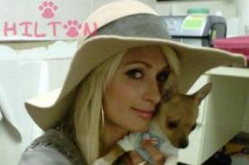 Paris Hilton decidida a ser la princesa de la música electrónica