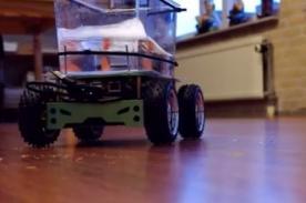 Increíble: Pez puede manipular un carro de control remoto - Video
