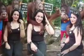 Travieso orangután se pasó de mañoso con mujer - VIDEO