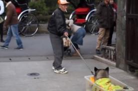 Japón: Hombre le rinde respeto a su perro que no puede caminar