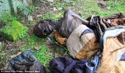 Fotos: Espeluznante hallazgo de momia con 'cola de caballo' de 130 años