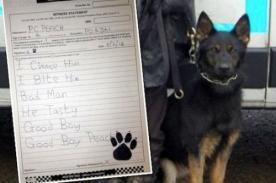 Perro policía 'escribe' declaración de testigo a la Fiscalía