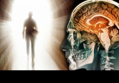 Estudio  revela que nuestro cerebro sigue en 'actividad' tras irse 'al más allá'
