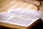 Genesis 8:7-12 es Trending Topic Mundial: Entérate por qué