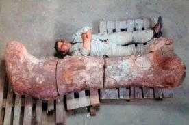 Descubren restos del que sería el dinosaurio más grande hasta ahora