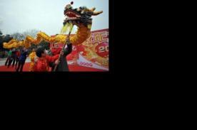 Tradiciónal desfile para celebrar el Año Nuevo Chino 2014