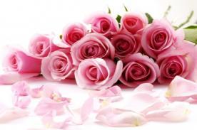 Canciones para el Día de la Mujer: Para dedicar en su día