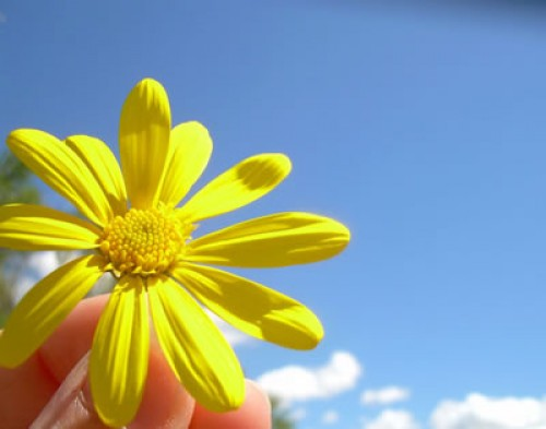 Poemas de Primavera: Inspiradores versos de Gabriela Mistral
