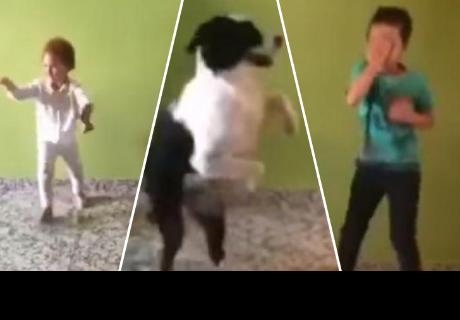 Dos niños bailan junto a su perro y causan sensación en la red