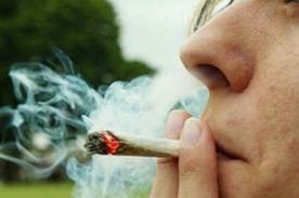 ¿Consumo de marihuana podría provocar la homosexualidad?