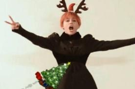 Fotos: Miley Cyrus y su bizarra forma de celebrar Navidad... Con un pene