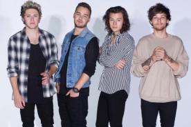 ¿One Direction se retira de la música por un buen tiempo?