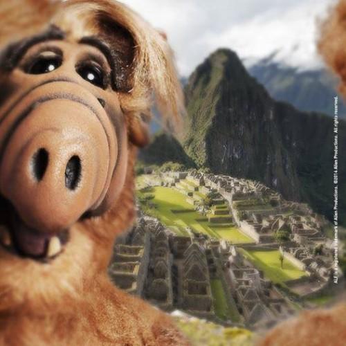 Divertido selfie de Alf sorprendio a peruanos