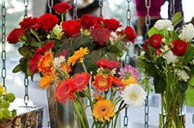 Día del Amor: Regala flores para hombres - Regalos por San Valentín