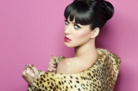 Katy Perry quiere incursionar en la actuación