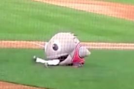 Insólito: Mascota se 'come' a jugador de béisbol en juego [VIDEO]