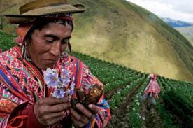 ¡Viva el campesino! ¡Celebra hoy el Día del Campesino!
